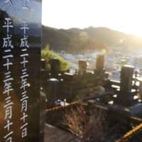 Headstones are seen in the morning sun at a cemetery in Otsuchi, Iwate Prefecture, on Wednesday, the ninth anniversary of the earthquake and tsunami that struck on March 11, 2011. | KYODO