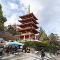 A storied history: The pagoda at Takahata Fudoson Kongoji temple.
