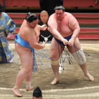 Aoiyama (right) shoves out Kotonowaka on Day 11 of the Spring Grand Sumo Tournament in Osaka on Wednesday. | NIKKAN SPORTS