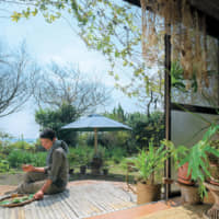 Sea and sky: Many plants indigenous to the area can be found in Sachiko Yatani's sanctuary. It's an airy place, with gaps in the trees providing glimpses of the sea. | YASUNOBU KOBAYASHI