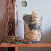 Natural fibers: Yatani devised her own technique for making thread from wild plants. The samples in this jar are fashioned from Japanese arrowroot and ramie. | YASUNOBU KOBAYASHI