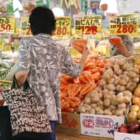 Rush to buy masks and toilet paper slows Japan's decline in household spending