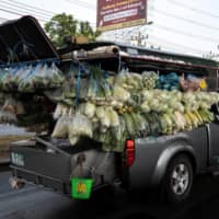 A mobile grocery truck loaded with fresh produce is seen along a street, during the coronavirus disease outbreak on the outskirts of Bangkok on Friday.    REUTERS