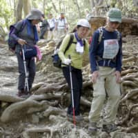 Japan mountaineering groups ask climbers to stay away during pandemic