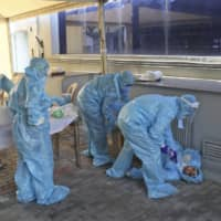 WHO chief says pandemic 'far from over,' expressing worry about children
