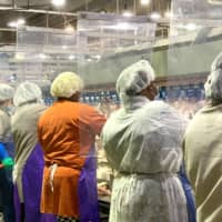 Workers wear protective masks and stand between plastic dividers at Tyson Foods'  Camilla, Georgia poultry processing plant. Tyson has added the dividers because of the coronavirus outbreak.  | TYSON FOODS / VIA AP