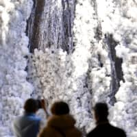 Ibaraki Prefecture boasts sightseeing spots such as Fukuroda Falls, but some say they aren't strong enough to define Ibaraki's image. | KYODO