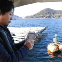 Yoshihiro Shimoie, a fishery cooperative official, checks data on a smartphone app about an oyster farm off Etajima, Hiroshima Prefecture, in January. | KYODO
