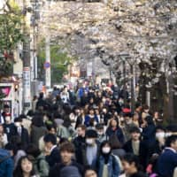 Shamed online: People visiting popular cherry blossom viewing sites in Tokyo such as Meguro River were criticized on social media for not showing self-restraint. | GETTY IMAGES