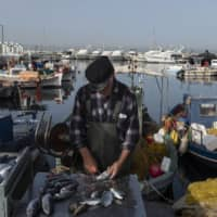 A fisherman cleans fish at a near Athens on Thursday. The European Union's executive arm pushed for a continent-wide revival of tourism with a series of policy recommendations for EU countries as they loosen lockdowns triggered by the coronavirus pandemic. | BLOOMBERG