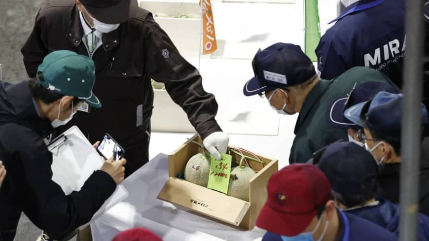 Price of Hokkaido melons at season's first auction drops sharply