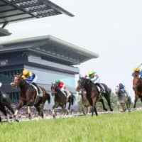 Roger Barow edges Danon Kingly to capture the 2019 Japanese Derby on May 26, 2019, at Tokyo Racecourse in Fuchu, Tokyo. | KYODO