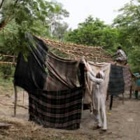 Pakistani Hindu refugees put together a makeshift hut using wood collected from surrounding trees, at a Hindu refugee settlement in New Delhi. | REUTERS