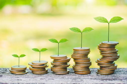 green plant leaves growing on coin stacking money saving business finance success wealth investment budget concept. stack coin on wood table with green blur background.