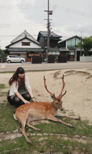 Not a dog, though: Shinya pets one of Nara's famous deer, but she admits to missing her dog in Germany, Mr. Fluffy.  | COURTESY OF SHINYA