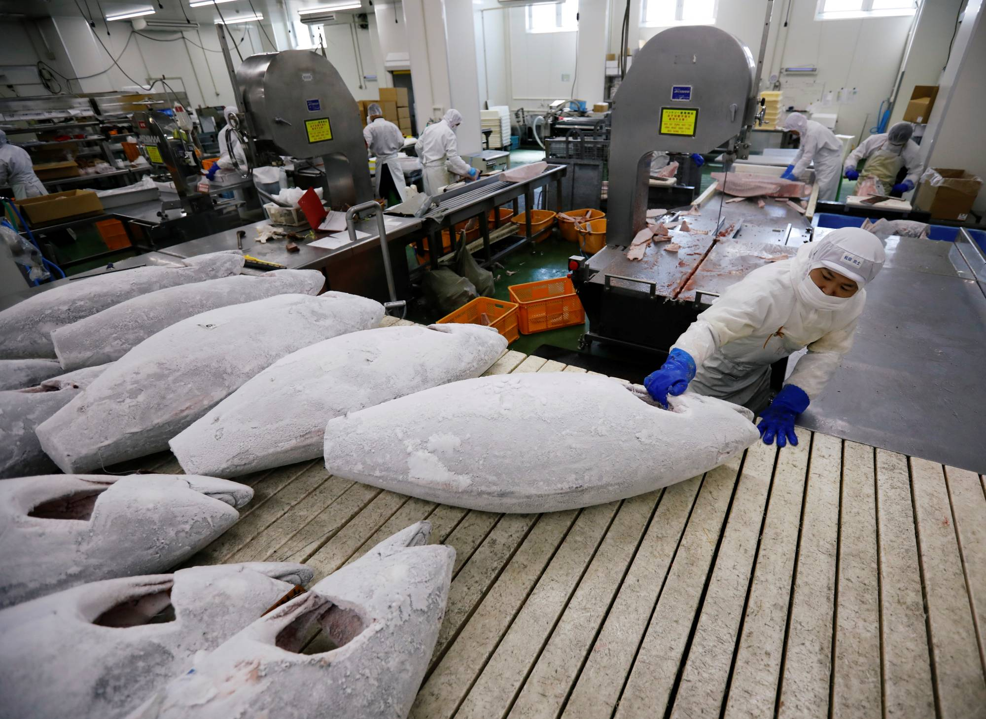 Japan accounts for a quarter of the 2 million tons of tuna consumed worldwide each year. | REUTERS