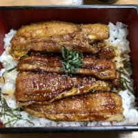 Better than unagi: Usami's take on the classic unajū (grilled freshwater eel rice bowl) swaps out expensive eel for deliciously meaty silver beltfish, locally fished in Usuki. | FLORENTYNA LEOW