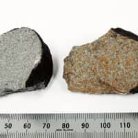 Fragments of a meteorite that landed on a condominium in Narashino, Chiba Prefecture | NATIONAL MUSEUM OF NATURE AND SCIENCE / VIA KYODO