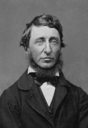 A walk to remember: A portrait photograph from a ninth-plate daguerreotype of Henry David Thoreau.  | BENJAMIN D. MAXHAM, NATIONAL PORTRAIT GALLERY/PUBLIC DOMAIN