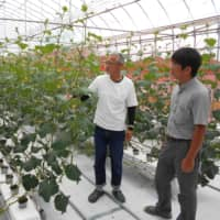 Katsumi Hashimoto (left) president of the Fukushima Seed Center, talks about how he teamed up with two other technology companies to make cucumber farming less labor intensive. | FUKUSHIMA MINPO
