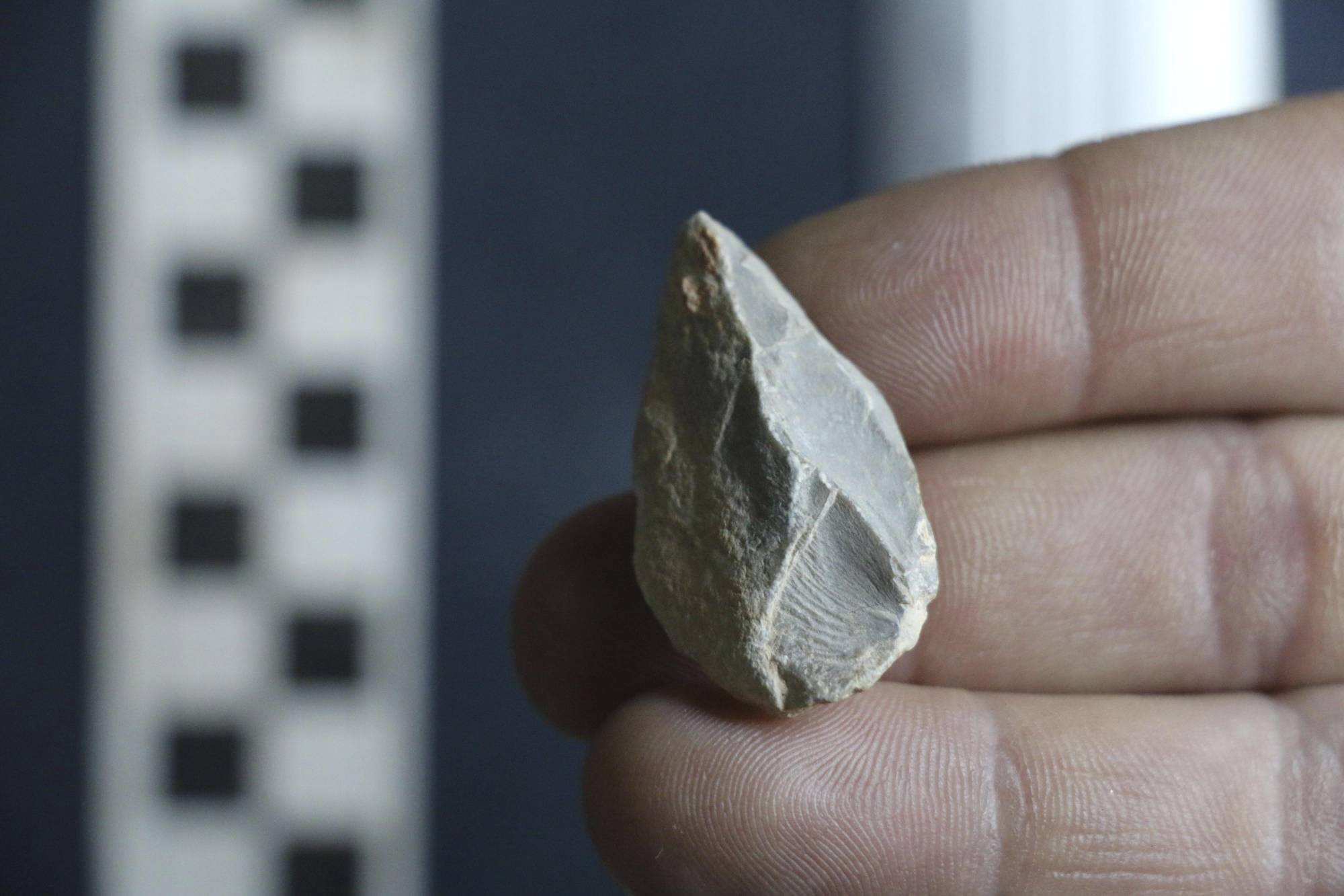 This undated photo provided by Ciprian Ardelean in July 2020 shows a stone tool found below the Last Glacial Maximum layer from a cave in Zacatecas in central Mexico. | CIPRIAN ARDELEAN VIA AP