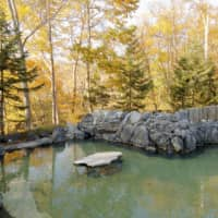 Ikoino Yuyado Iroha hot spring is one of many local spots where visitors can relax after a day of exploring.