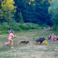 A naked sunbather gives chase Wednesday after a wild boar stole his laptop while he was relaxing by Teufelsee Lake in Berlin, an escapade that has gone viral. | ADELE LANDAUER / @ADELELANDAUER_LIFECOACH / VIA AFP-JIJI