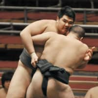 Hakuho may be on path to becoming great stablemaster if latest recruit pans out