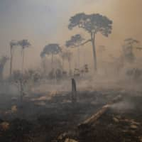 Fire consumes land recently deforested by cattle farmers near Novo Progresso, Para state, Brazil, on Aug. 23. | AP