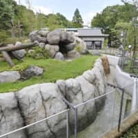 'Panda no Mori' (Panda's Forest) at Tokyo's Ueno zoo was opened to the public on Tuesday. | KYODO
