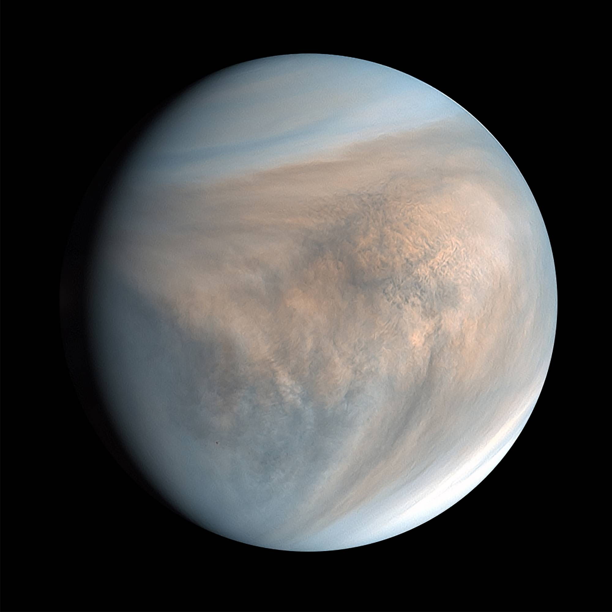 An image of Venus made with data recorded by Japan's Akatsuki spacecraft in 2016. So close, so similar and very mysterious, the planet is surprising scientists with a chemical signature spotted in its clouds. | PLANET-C PROJECT TEAM / JAXA / VIA THE NEW YORK TIMES