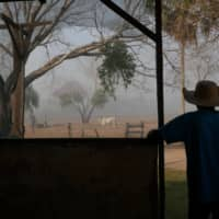 Dorvalino Conceicao Camargo, 56, stands on the ranch where he works as smoke rises nearby.  | REUTERS