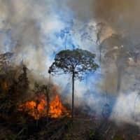 Smoke rises from an illegally lit fire in an Amazon rainforest reserve south of Novo Progresso in Para State, Brazil, on Aug. 15. | AFP-JIJI