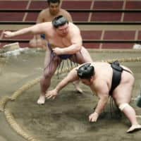 Sumo fans have plenty to look forward to in coming weeks