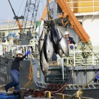 Japan's plan to raise Pacific bluefin tuna quota rejected again