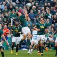 Springboks delay decision on Rugby Championship participation