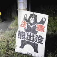 Niigata Prefecture raises bear alert after woman dies from attack