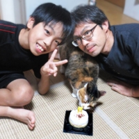 It's game, set and a perfect match for this cat and her new family