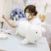 The Tokyo clinic bringing stuffed toys back to life