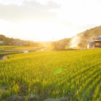 The simple life: A more rural lifestyle is gaining appeal with some Japanese urbanites. | GETTY IMAGES