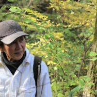 Mushroom master: 'I have to keep ahead of all the 'rivals' who are also out here looking for mushrooms,' says Ikuko Sato. | CHIARA TERZUOLO