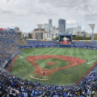 The government attempted to gather information on large gatherings by holding a three-day trial with relaxed attendance limits during a series between NPB's Yokohama BayStars and Hanshin Tigers from Oct. 30 to Nov. 1 at Yokohama Stadium. | JASON COSKREY