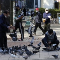 People feed pigeons on a street in Goyang, South Korea, on Wednesday. | AP