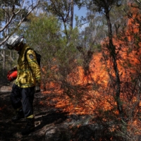 A firefighter conducts a controlled burn near Sydney as preparation for Australia's upcoming bushfire season. | REUTERS