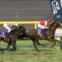 Third favorite Suave Richard, ridden by Oisin Murphy, won last year's Japan Cup.  | KYODO