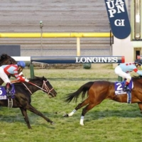Almond Eye (right), ridden by Christophe Lemaire, crosses the finish line at Tokyo Racecourse to win the 40th running of the Japan Cup on Sunday.  | KYODO