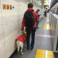 Some guide dog users in Japan have reported receiving less help from others during the coronavirus pandemic. | CC BY 4.0 / NESNAD
