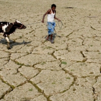 An Indian farmer on a dried paddy field at Srilankabasti village, on the outskirts of Agartala, the capital of northeastern state of Tripura   AFP-JIJI