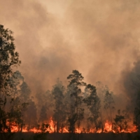 Firefighters try to contain dozens of out-of-control blazes in New South Wales, Australia, in November 2019.  | AFP-JIJI