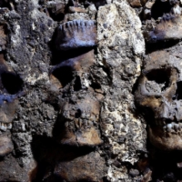 Mexico's 'tower of skulls' yields more ancient remains